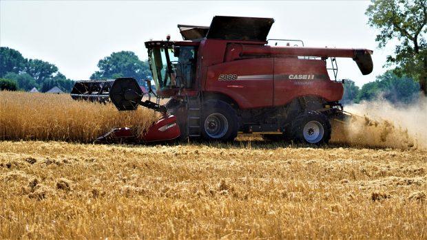 Erntebilanz 2019 für NRW geht von durchschnittlicher Getreideernte aus